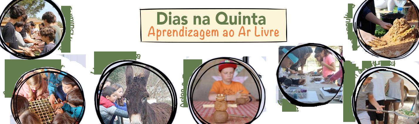 diasnaquinta_landpage_pt